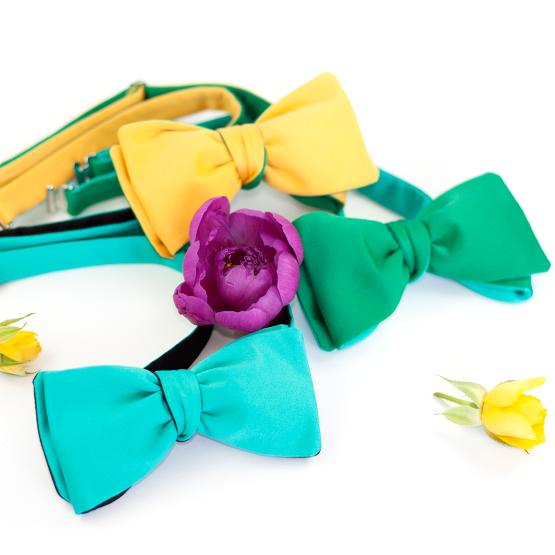 Papion Self-Tie Yellow